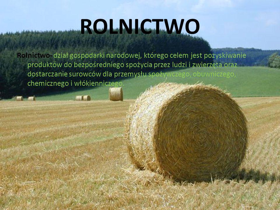 ROLNICTWO Rolnictwo- dział gospodarki narodowej, którego celem jest pozyskiwanie produktów do bezpośredniego spożycia przez ludzi i zwierzęta oraz dos