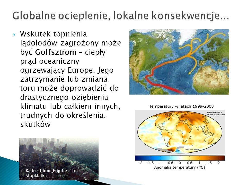  Wskutek topnienia lądolodów zagrożony może być Golfsztrom - ciepły prąd oceaniczny ogrzewający Europę. Jego zatrzymanie lub zmiana toru może doprowa