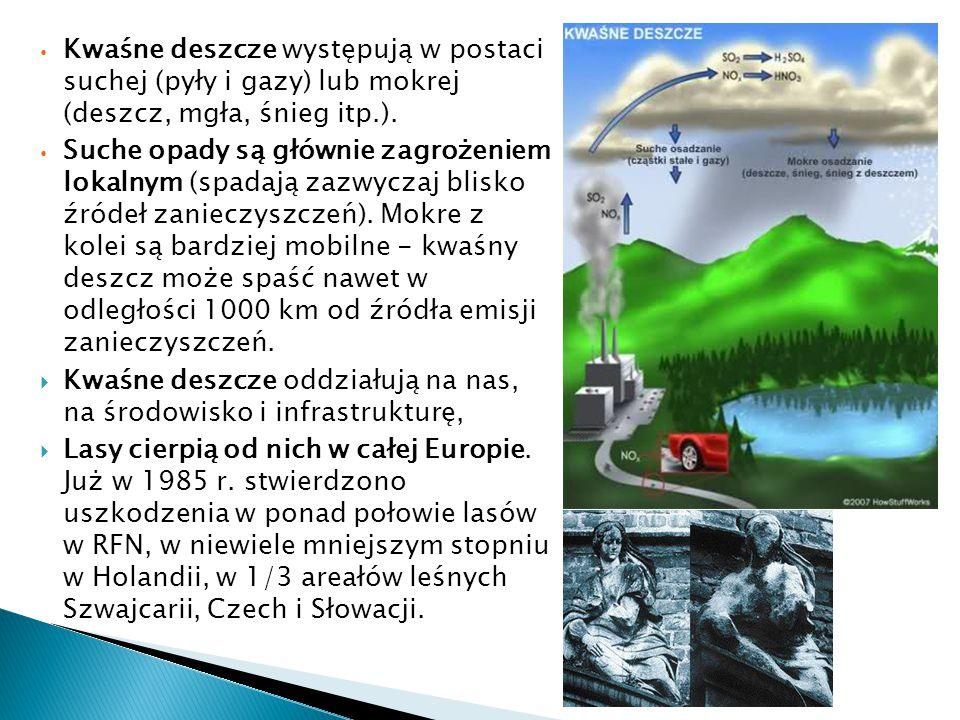 Kwaśne deszcze występują w postaci suchej (pyły i gazy) lub mokrej (deszcz, mgła, śnieg itp.). Suche opady są głównie zagrożeniem lokalnym (spadają za