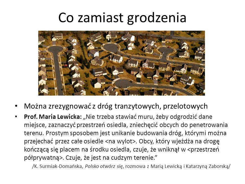 """Co zamiast grodzenia Można zrezygnować z dróg tranzytowych, przelotowych Prof. Maria Lewicka: """"Nie trzeba stawiać muru, żeby odgrodzić dane miejsce, z"""