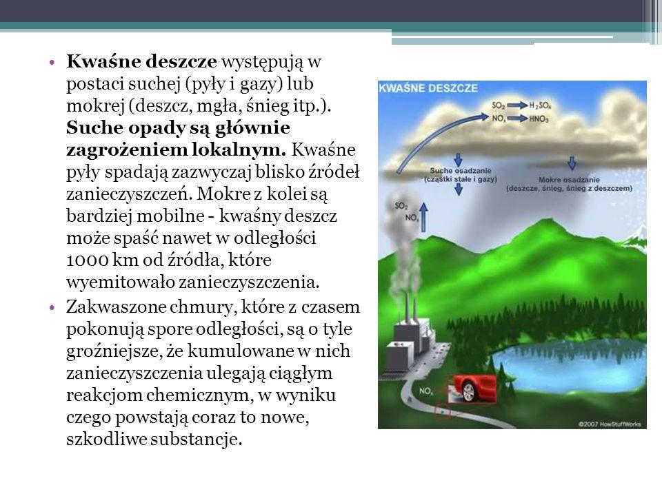 Kwaśne deszcze oddziałują praktycznie na wszystko: na środowisko i infrastrukturę, na nas Lasy cierpią od nich w całej Europie.