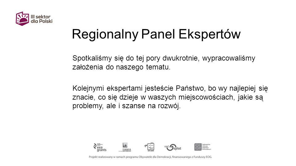 Regionalny Panel Ekspertów Spotkaliśmy się do tej pory dwukrotnie, wypracowaliśmy założenia do naszego tematu.