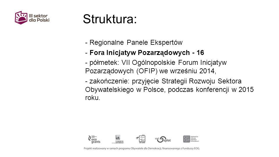 Struktura: - Regionalne Panele Ekspertów - Fora Inicjatyw Pozarządowych - 16 - półmetek: VII Ogólnopolskie Forum Inicjatyw Pozarządowych (OFIP) we wrześniu 2014, - zakończenie: przyjęcie Strategii Rozwoju Sektora Obywatelskiego w Polsce, podczas konferencji w 2015 roku.