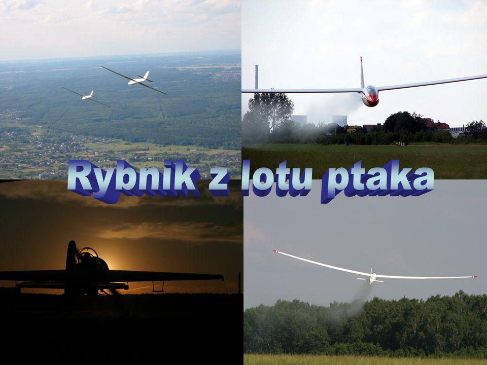 Aeroklub znajduje się w Gotartowicach.Lotnisko zajmuje duży obszar ziemi poza miastem.