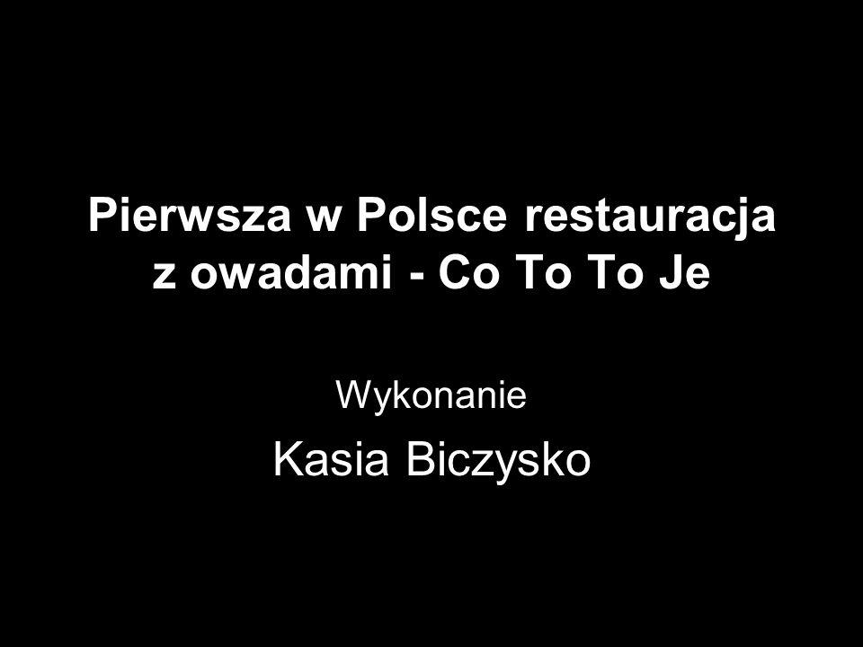 Pierwsza w Polsce restauracja z owadami - Co To To Je Wykonanie Kasia Biczysko