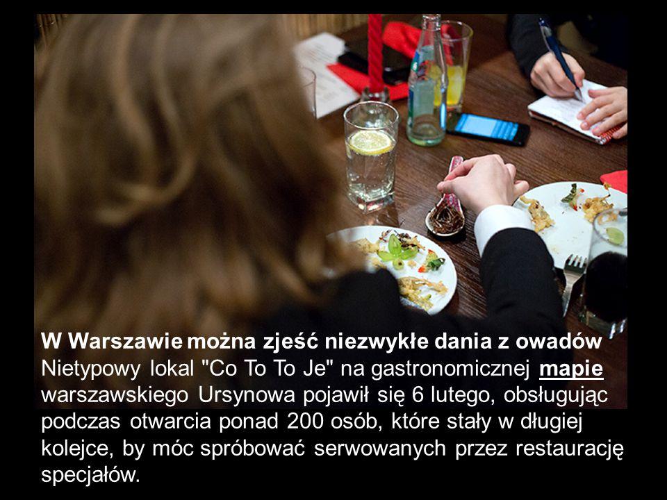 W Warszawie można zjeść niezwykłe dania z owadów Nietypowy lokal
