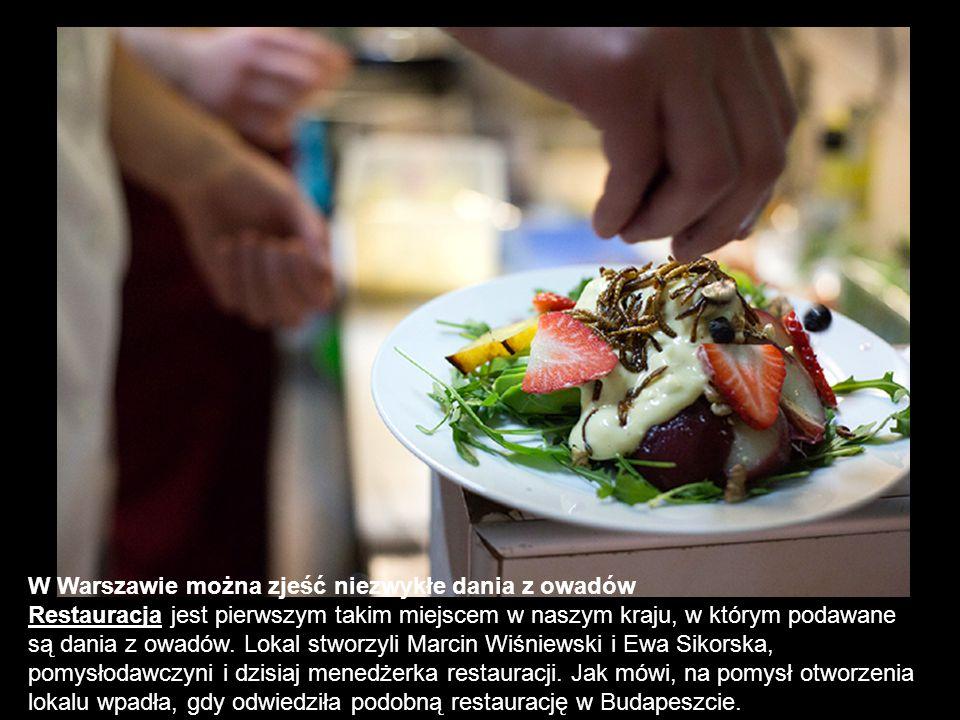W Warszawie można zjeść niezwykłe dania z owadów Restauracja jest pierwszym takim miejscem w naszym kraju, w którym podawane są dania z owadów. Lokal