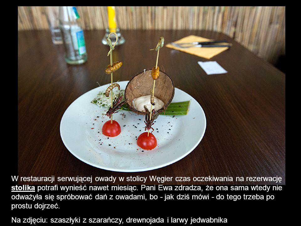 W restauracji serwującej owady w stolicy Węgier czas oczekiwania na rezerwację stolika potrafi wynieść nawet miesiąc. Pani Ewa zdradza, że ona sama wt