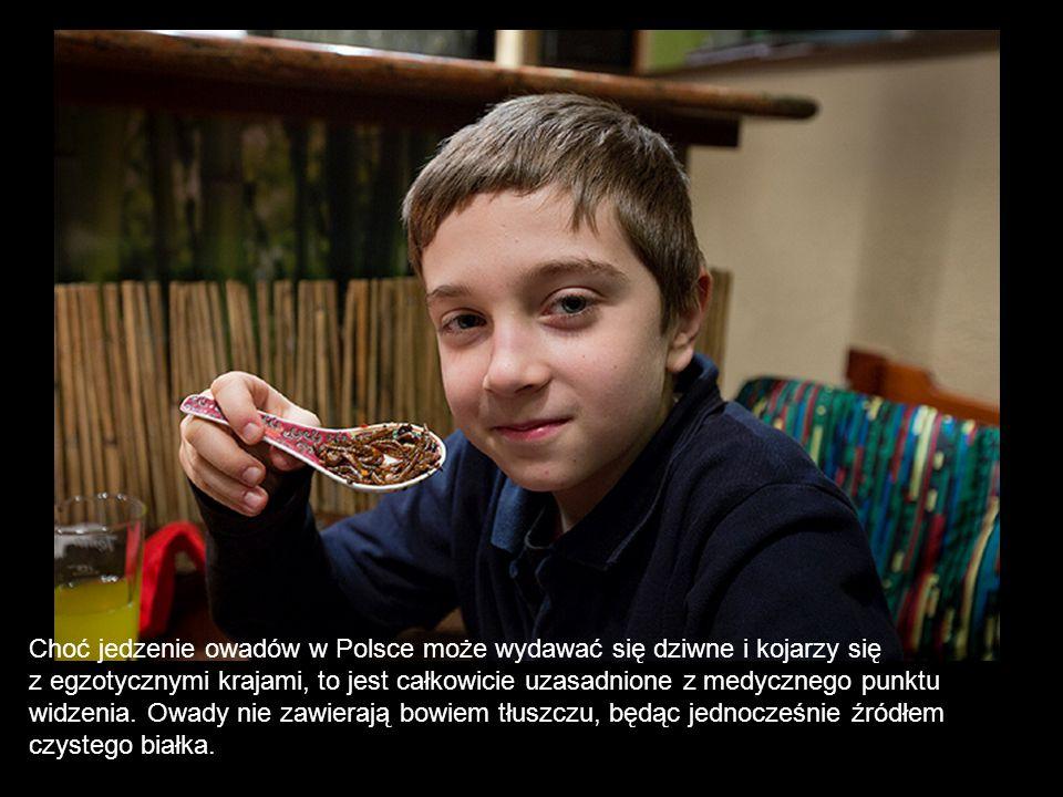 Choć jedzenie owadów w Polsce może wydawać się dziwne i kojarzy się z egzotycznymi krajami, to jest całkowicie uzasadnione z medycznego punktu widzeni