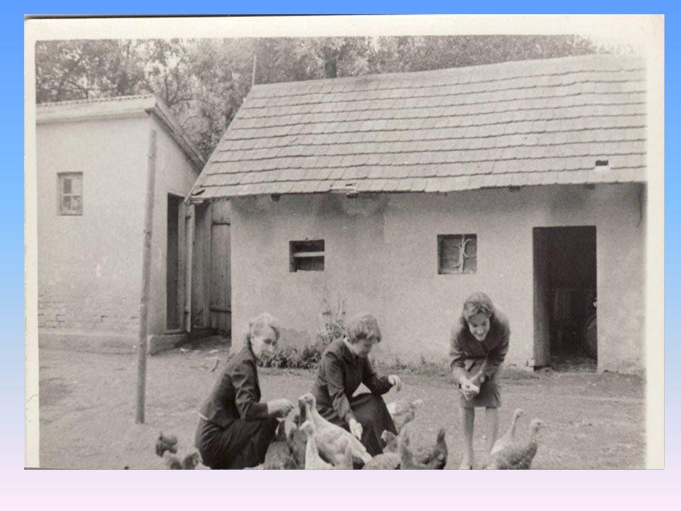Budowę murowanej szkoły, w której obecnie się uczymy, rozpoczęto pod koniec XIX wieku.