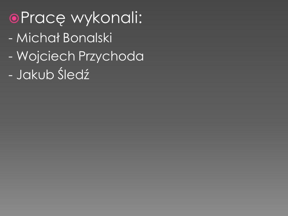  Pracę wykonali: - Michał Bonalski - Wojciech Przychoda - Jakub Śledź