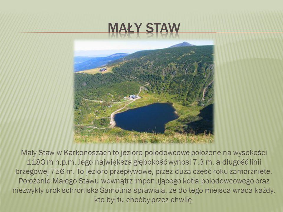 Mały Staw w Karkonoszach to jezioro polodowcowe położone na wysokości 1183 m n.p.m. Jego największa głębokość wynosi 7,3 m, a długość linii brzegowej