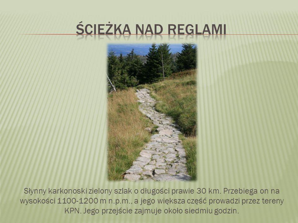 Słynny karkonoski zielony szlak o długości prawie 30 km. Przebiega on na wysokości 1100-1200 m n.p.m., a jego większa część prowadzi przez tereny KPN.