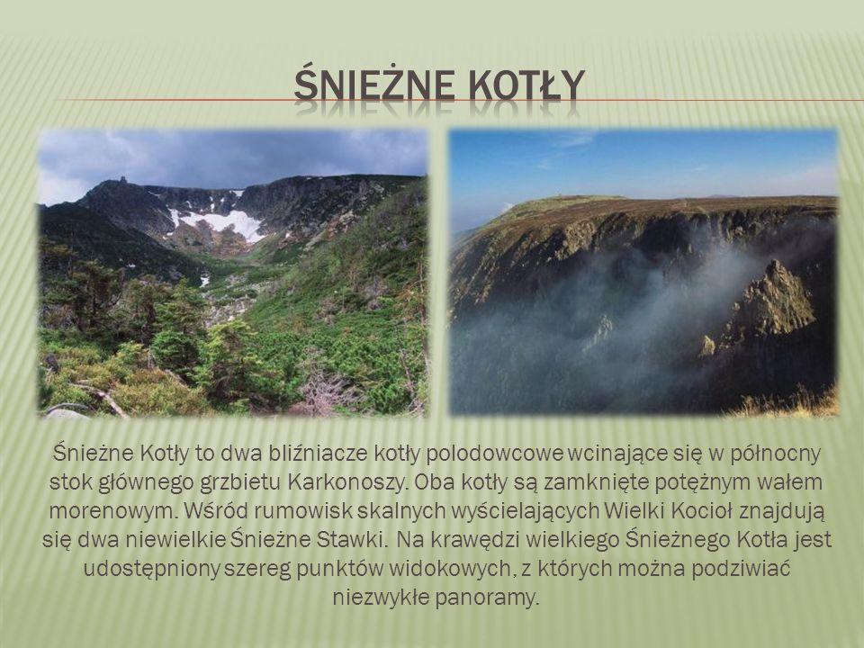 Śnieżne Kotły to dwa bliźniacze kotły polodowcowe wcinające się w północny stok głównego grzbietu Karkonoszy.