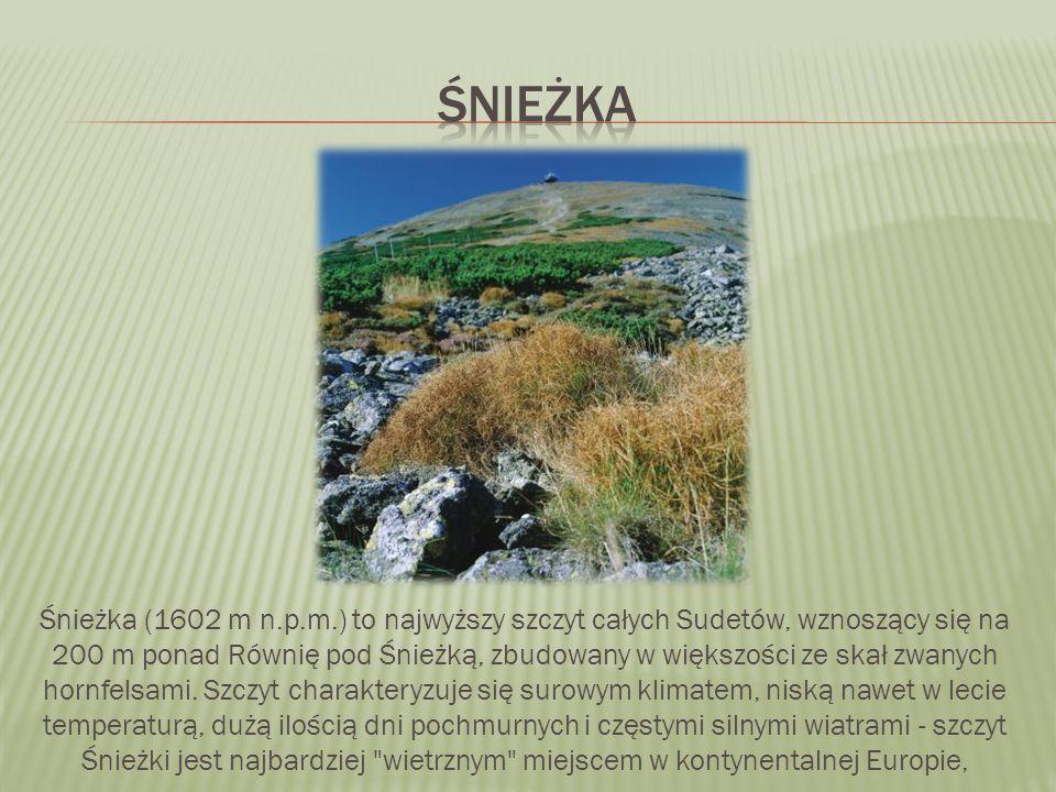 Śnieżka (1602 m n.p.m.) to najwyższy szczyt całych Sudetów, wznoszący się na 200 m ponad Równię pod Śnieżką, zbudowany w większości ze skał zwanych hornfelsami.