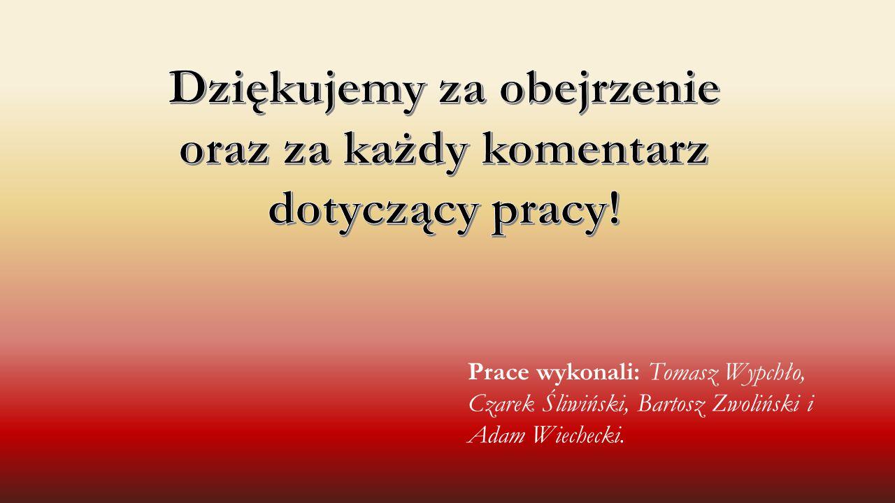 Prace wykonali: Tomasz Wypchło, Czarek Śliwiński, Bartosz Zwoliński i Adam Wiechecki.