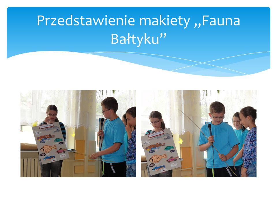 """Przedstawienie makiety """"Fauna Bałtyku"""""""