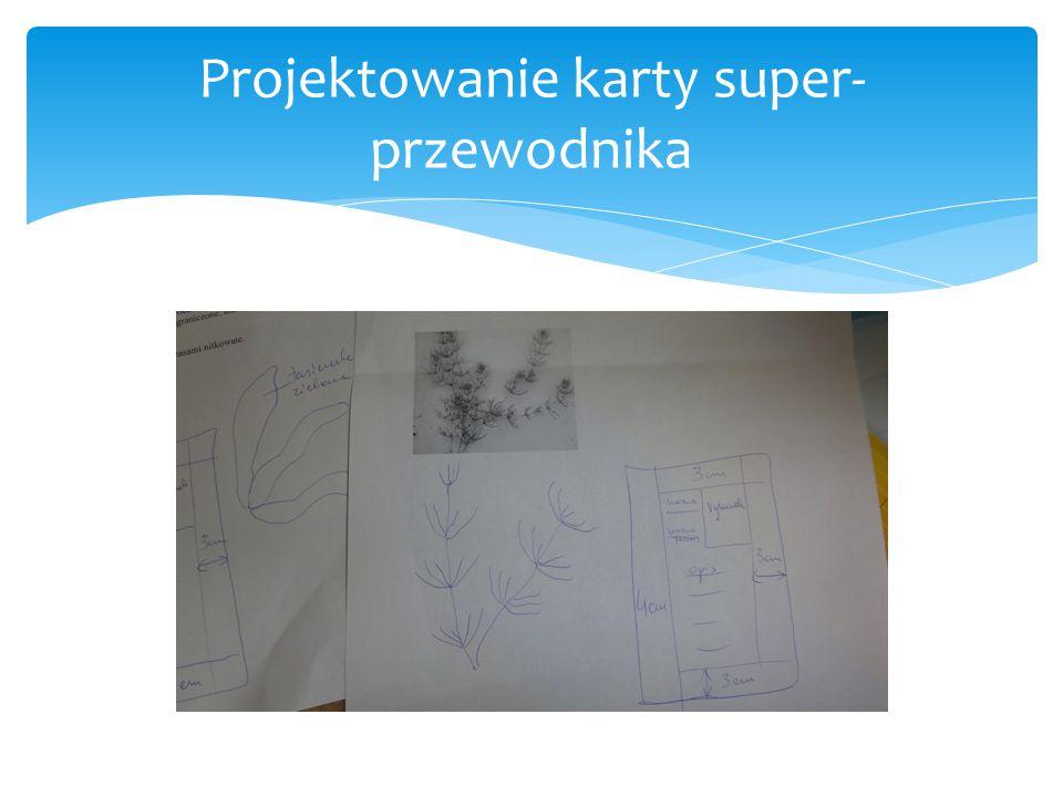 Projektowanie karty super- przewodnika