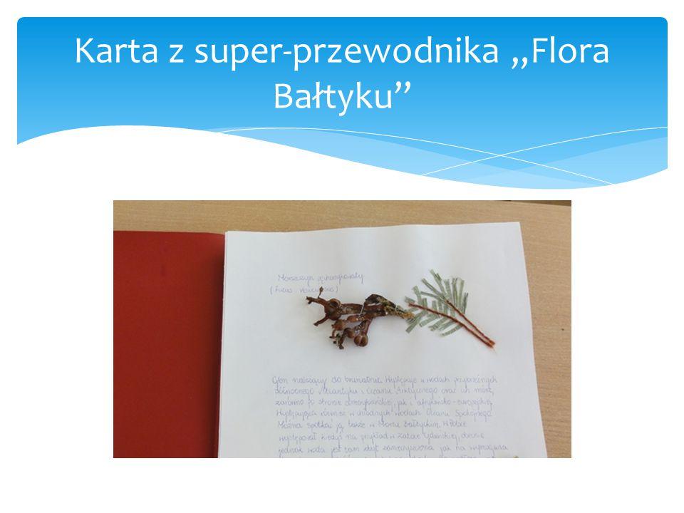 """Karta z super-przewodnika """"Flora Bałtyku"""""""