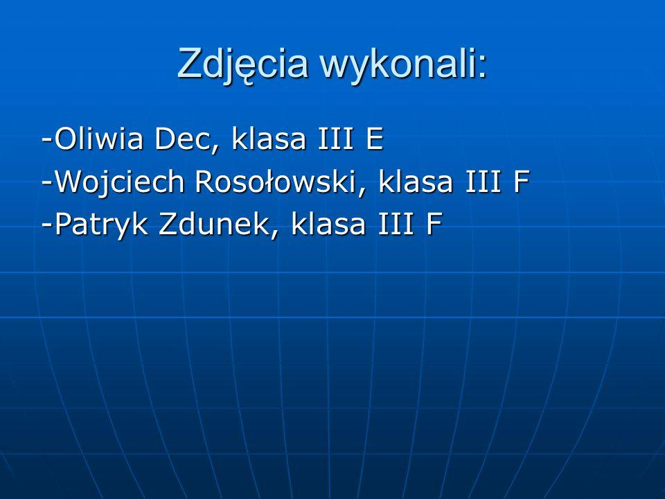 Zdjęcia wykonali: -Oliwia Dec, klasa III E -Wojciech Rosołowski, klasa III F -Patryk Zdunek, klasa III F