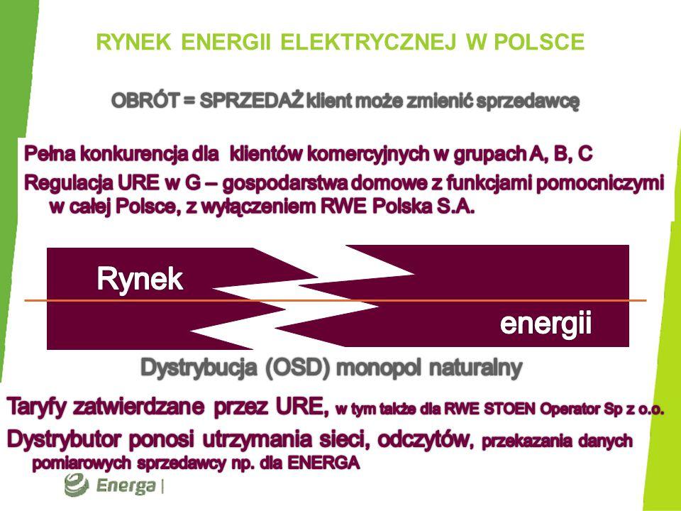 GŁÓWNI GRACZE RYNKU RWE Polska S.A.