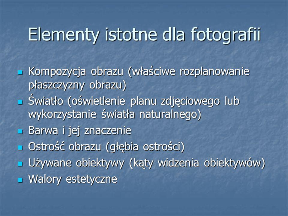 Elementy istotne dla fotografii Kompozycja obrazu (właściwe rozplanowanie płaszczyzny obrazu) Kompozycja obrazu (właściwe rozplanowanie płaszczyzny ob
