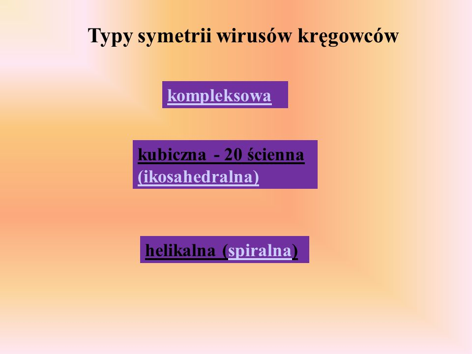 kompleksowa kubiczna - 20 ścienna (ikosahedralna) helikalna (spiralna) Typy symetrii wirusów kręgowców