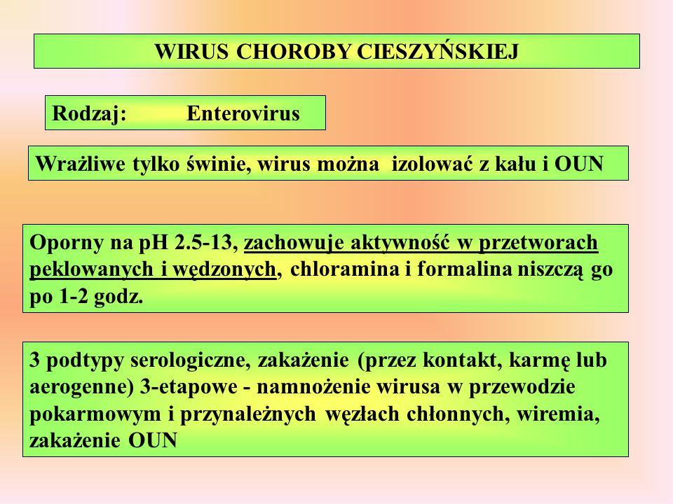 WIRUS CHOROBY CIESZYŃSKIEJ Wrażliwe tylko świnie, wirus można izolować z kału i OUN Oporny na pH 2.5-13, zachowuje aktywność w przetworach peklowanych