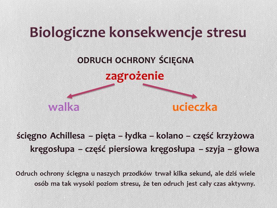 Biologiczne konsekwencje stresu ODRUCH OCHRONY ŚCIĘGNA zagrożenie walka ucieczka ścięgno Achillesa – pięta – łydka – kolano – część krzyżowa kręgosłup