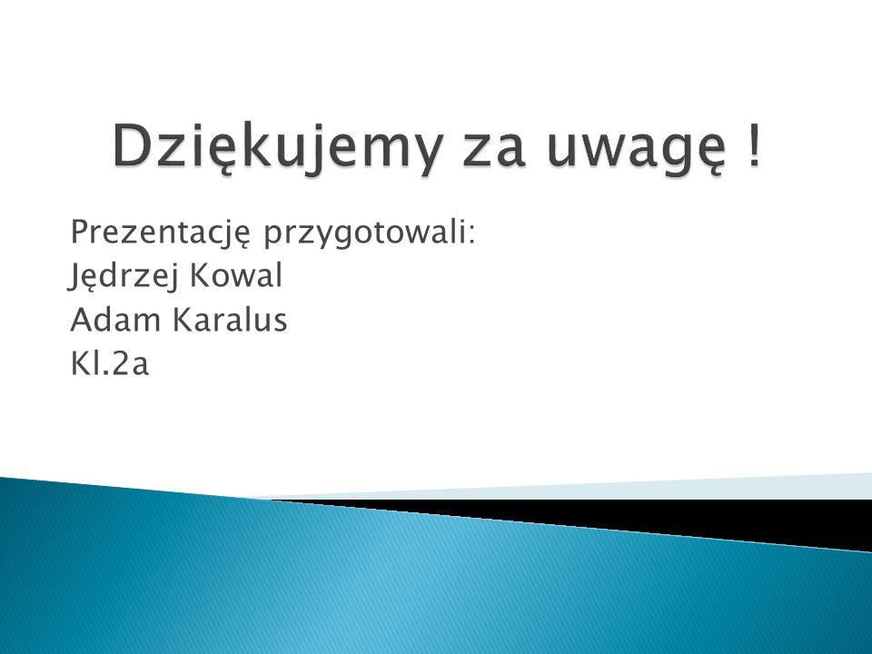 Prezentację przygotowali: Jędrzej Kowal Adam Karalus Kl.2a