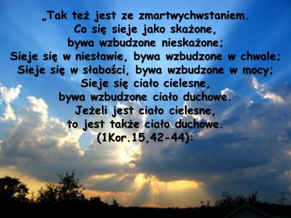 """""""Tak też jest ze zmartwychwstaniem. Co się sieje jako skażone, bywa wzbudzone nieskażone; Sieje się w niesławie, bywa wzbudzone w chwale; Sieje się w"""