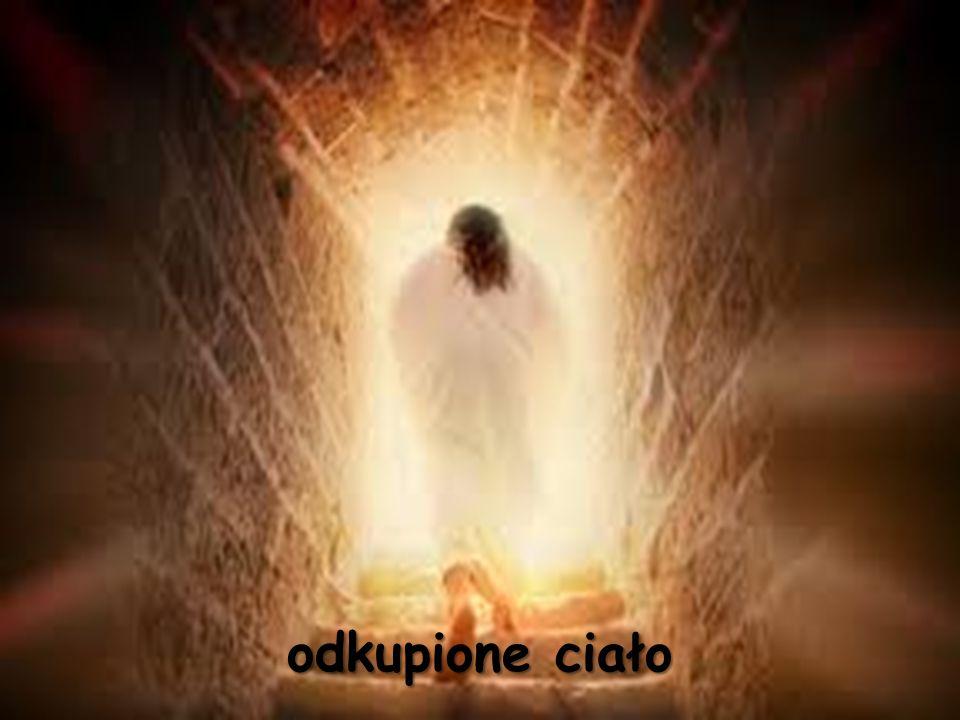 """""""Tak też jest ze zmartwychwstaniem."""