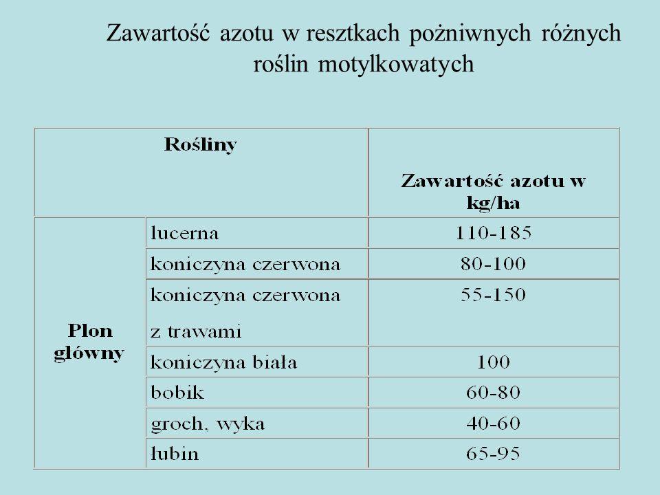 Znaczenie gospodarcze wyki kosmatej (ozimej) Wyka kosmata jest jedyną rośliną strączkową, która zimuje w naszych warunkach klimatycznych.