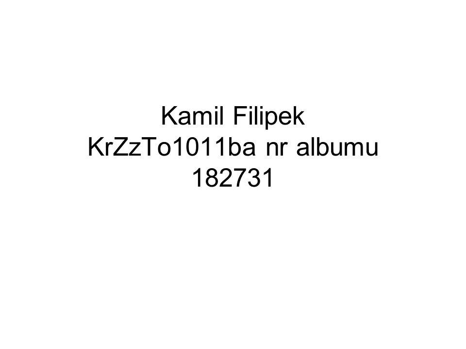 Kamil Filipek KrZzTo1011ba nr albumu 182731