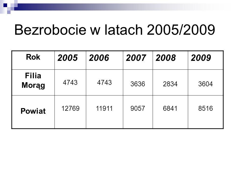 Bezrobocie w latach 2005/2009 Rok 20052006200720082009 Filia Morąg 4743 363628343604 Powiat 1276911911905768418516