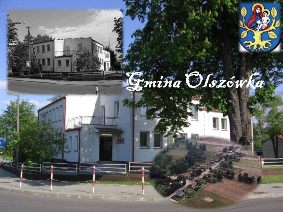 Gmina Olszówka położona jest w części wschodniej województwa wielkopolskiego, na pograniczu Wielkopolski i Ziemi Łęczyckiej.
