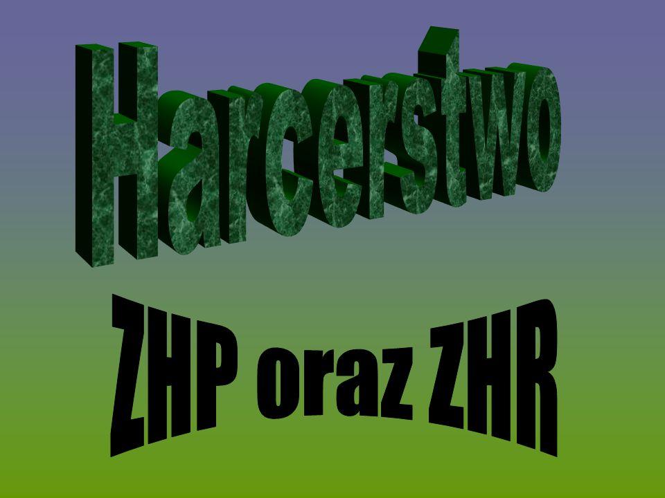 ZHP 8 Suchedniowska Drużyna Harcerska ZHP,,Czarna Ósemka ,,Czarna Ósemka to jednostka organizacyjna Związku Harcerstwa Polskiego (ZHP), działająca w Suchedniowie, Chorągwi Kieleckiej, Hufcu Kielce - Powiat, Związku Drużyn Suchedniów.