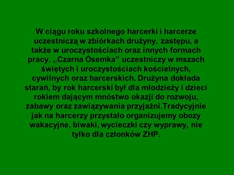 ZHR zastęp Suchedniów Harcerze biorą udział w zbiórkach zastępu.