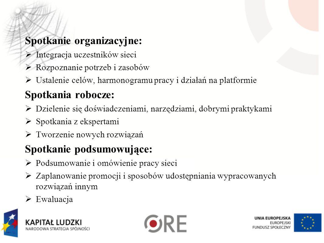 Spotkanie organizacyjne:  Integracja uczestników sieci  Rozpoznanie potrzeb i zasobów  Ustalenie celów, harmonogramu pracy i działań na platformie