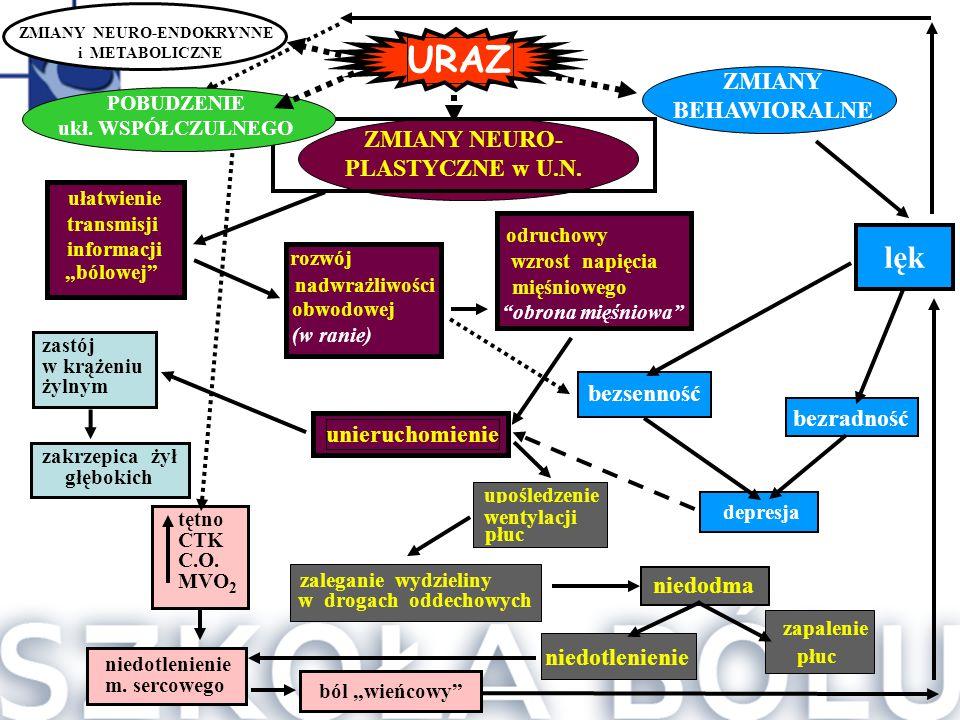 """ułatwienie transmisji informacji """"bólowej"""" rozwój nadwrażliwości obwodowej (w ranie) odruchowy wzrost napięcia mięśniowego """"obrona mięśniowa"""" unieruch"""