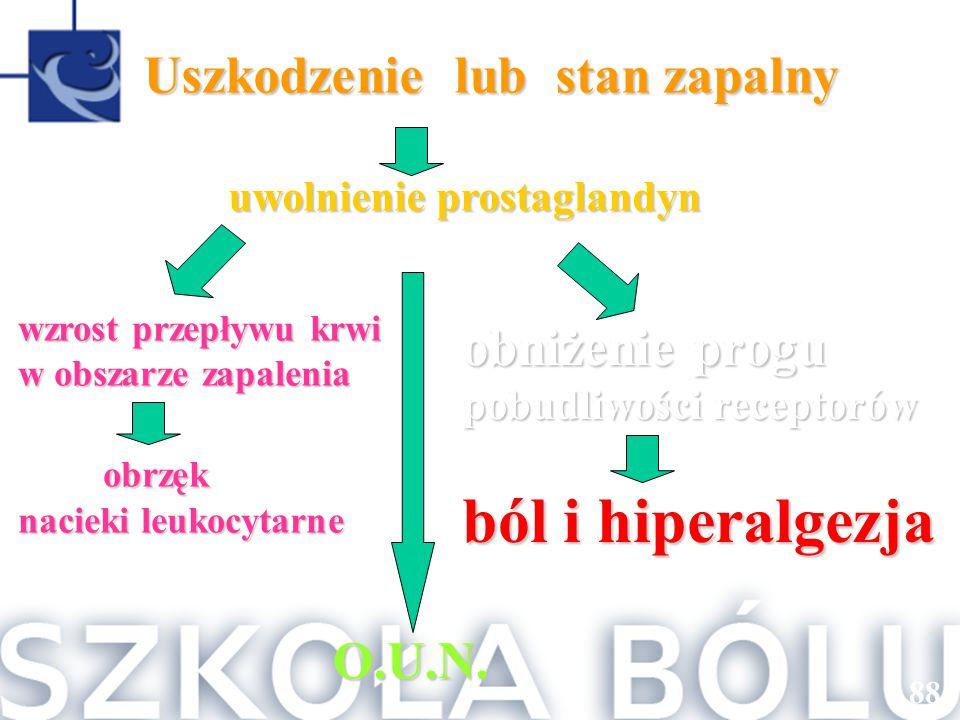 O.U.N. Uszkodzenie lub stan zapalny Uszkodzenie lub stan zapalny uwolnienie prostaglandyn uwolnienie prostaglandyn obniżenie progu pobudliwości recept