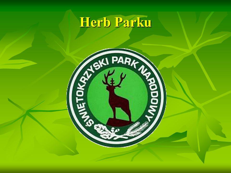 Symbole Parku – Jodła i Gołoborze http://www.swietokrzyskipn.org.pl/wp/wp-content/uploads/2010/03/6goloborze_jk.jpg