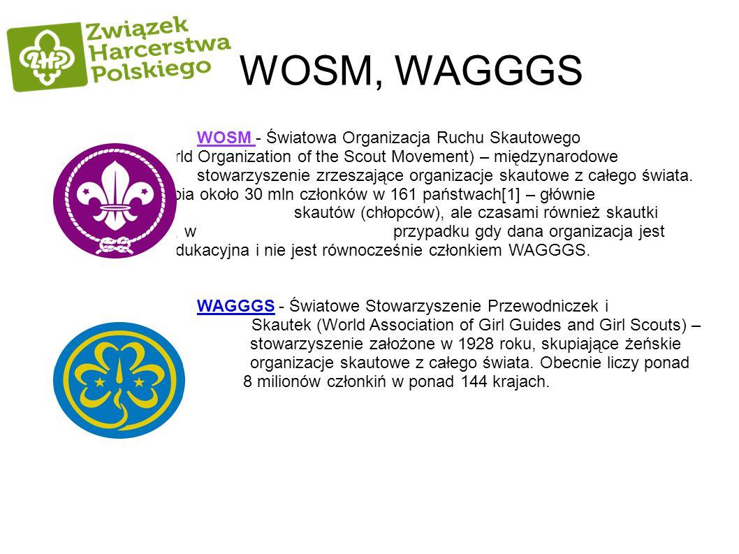 WOSM, WAGGGS WOSM - Światowa Organizacja Ruchu Skautowego (World Organization of the Scout Movement) – międzynarodowe stowarzyszenie zrzeszające organ