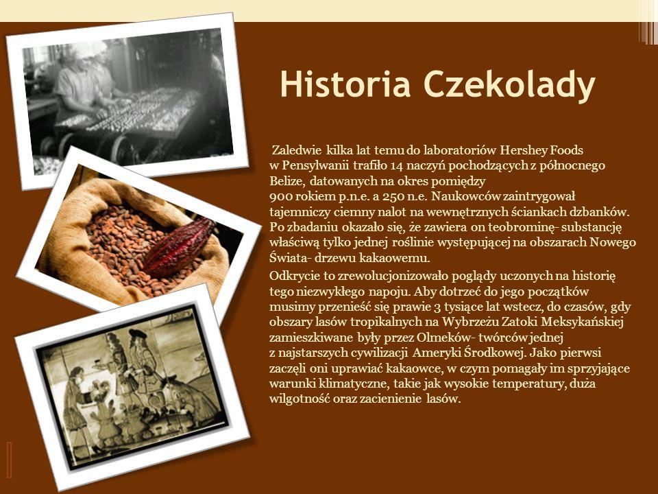 Historia Czekolady Zaledwie kilka lat temu do laboratoriów Hershey Foods w Pensylwanii trafiło 14 naczyń pochodzących z północnego Belize, datowanych na okres pomiędzy 900 rokiem p.n.e.