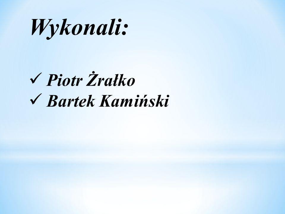 Wykonali: Piotr Żrałko Bartek Kamiński