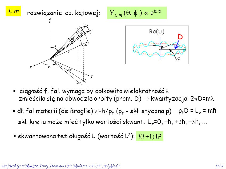 Wojciech Gawlik – Struktury Atomowe i Molekularne, 2005/06, Wykład 111/20 l, m rozwiązanie cz. kątowej: Y l, m ( ,  )  e im   ciągłość f. fal. wy