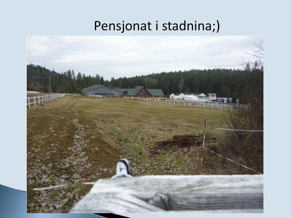 Pensjonat i stadnina;)