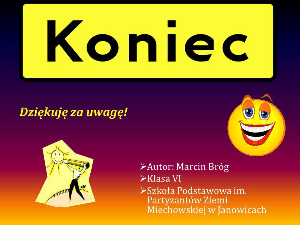 Dziękuję za uwagę!  Autor: Marcin Bróg  Klasa VI  Szkoła Podstawowa im. Partyzantów Ziemi Miechowskiej w Janowicach