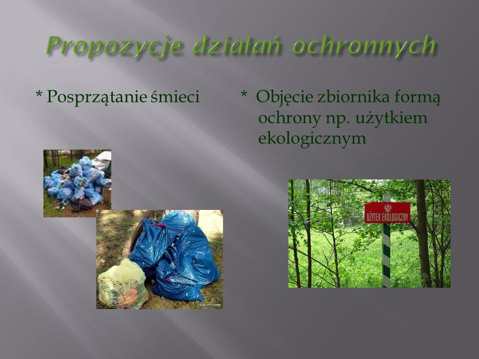 * Posprzątanie śmieci * Objęcie zbiornika formą ochrony np. użytkiem ekologicznym
