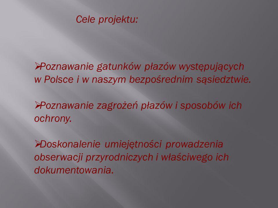 Cele projektu:  Poznawanie gatunków płazów występujących w Polsce i w naszym bezpośrednim sąsiedztwie.  Poznawanie zagrożeń płazów i sposobów ich oc